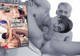 """Staxus releases """"Twinks Destroyed 4"""" on DVD"""