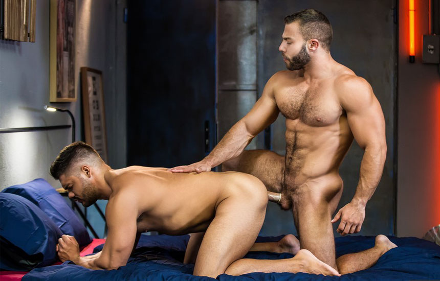Muscled Porno GAYS Best Videos GAYS 1