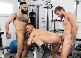 Zaddy, Max Adonis and Colby Tucker fuck in the gym for Icon Male