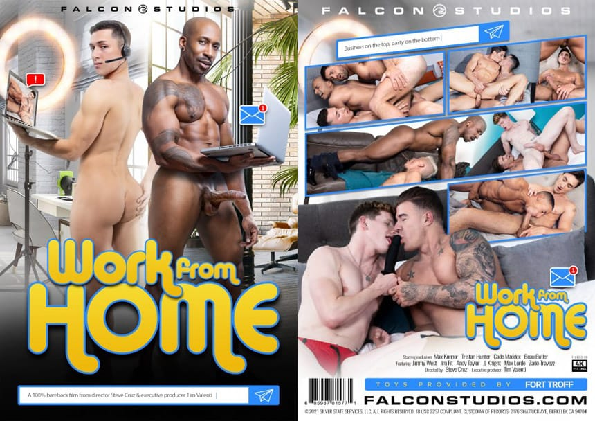 Work From Home - Falcon Studios